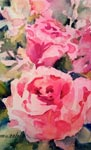 Pink & Pink Roses by Marie Natale